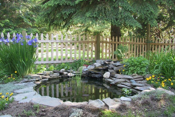 Pond Service Tips For Installation Repair And Maintenance